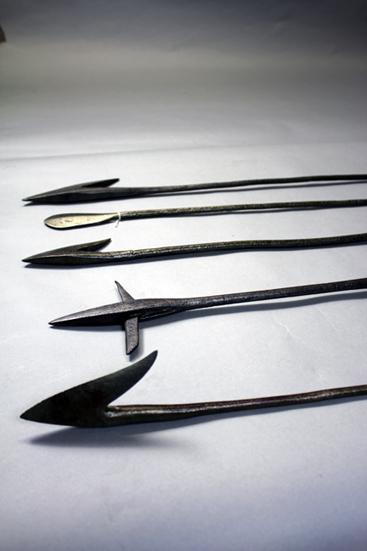Des harpons utilisés par les familles anglophones de la baie de Gaspé pour chasser le thon et la baleine. – fin 19e siècle.